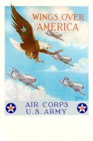 Army Air Corp flyer